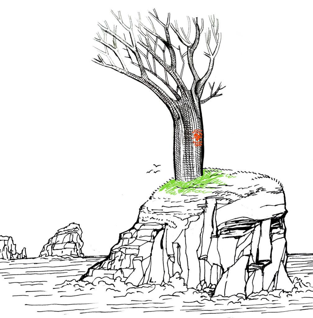 arbol-isla